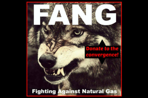 Shale Gas - Fang