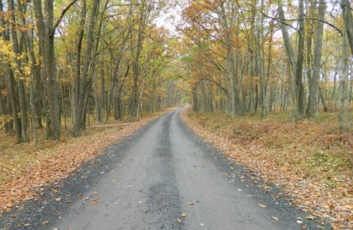 DCNR State Forest Access Road Improved for Gas Drilling