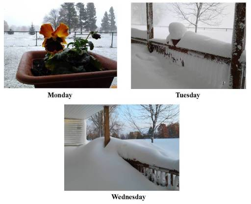 Buffalo Snow - Three days of the porch