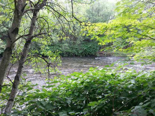 Invenergy Lackawanna River
