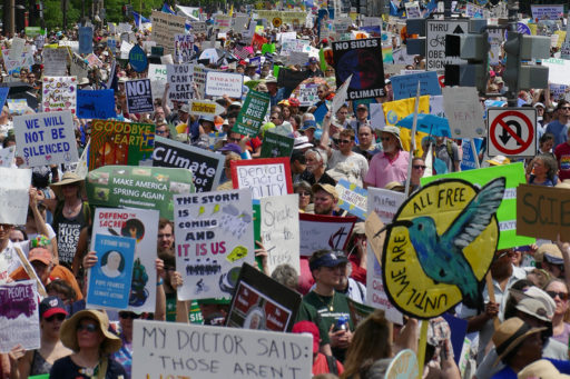 Environmentalists protest