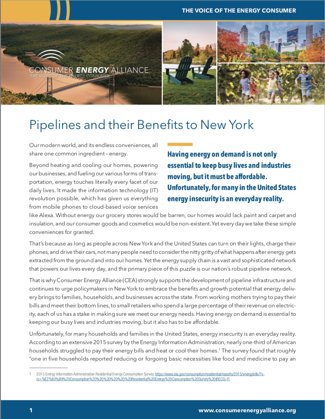 New York Electricity Prices
